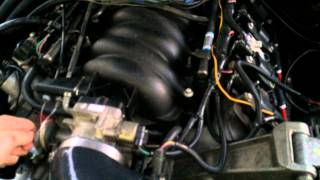 Toyota Pickup 5.3 / LS1 Swapped 1st Start-Up
