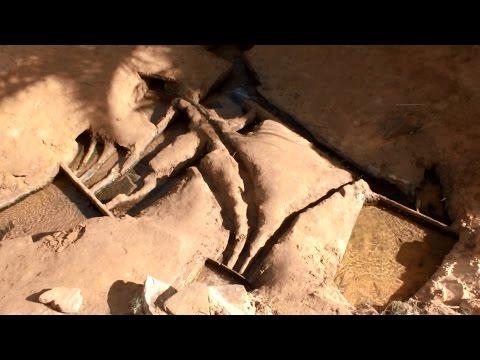 وثائقي السياحة في  بلدية أولاد سعيد تيميمون -tourisme dans ouled said timimoun