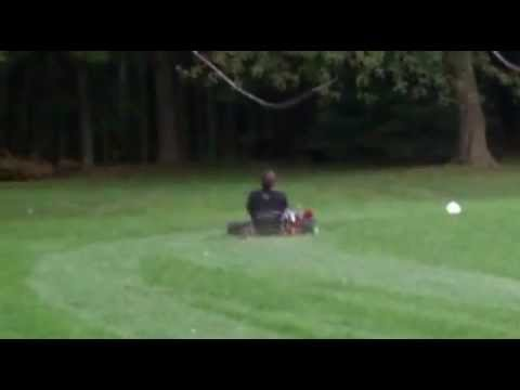 Briggs And Stratton The Animal Go Kart