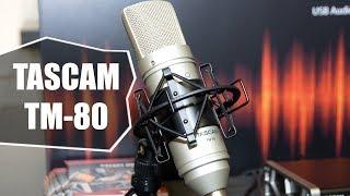 обзор микрофона TASCAM TM 80