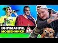 Взлом Эдварда Била // BlackStar диссит Фейса