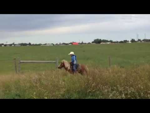 Cheyenne River Sioux Tribal Ventures INDIVIDUAL Path