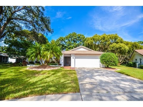 2665 Camille Dr Palm Harbor FL Best Real Estate Agent in Highland Lakes Duncan Duo RE/MAX Home Video