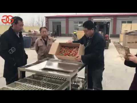 Strawberry Sorting Machine Multipurpose Fruit Size Sorting Machine