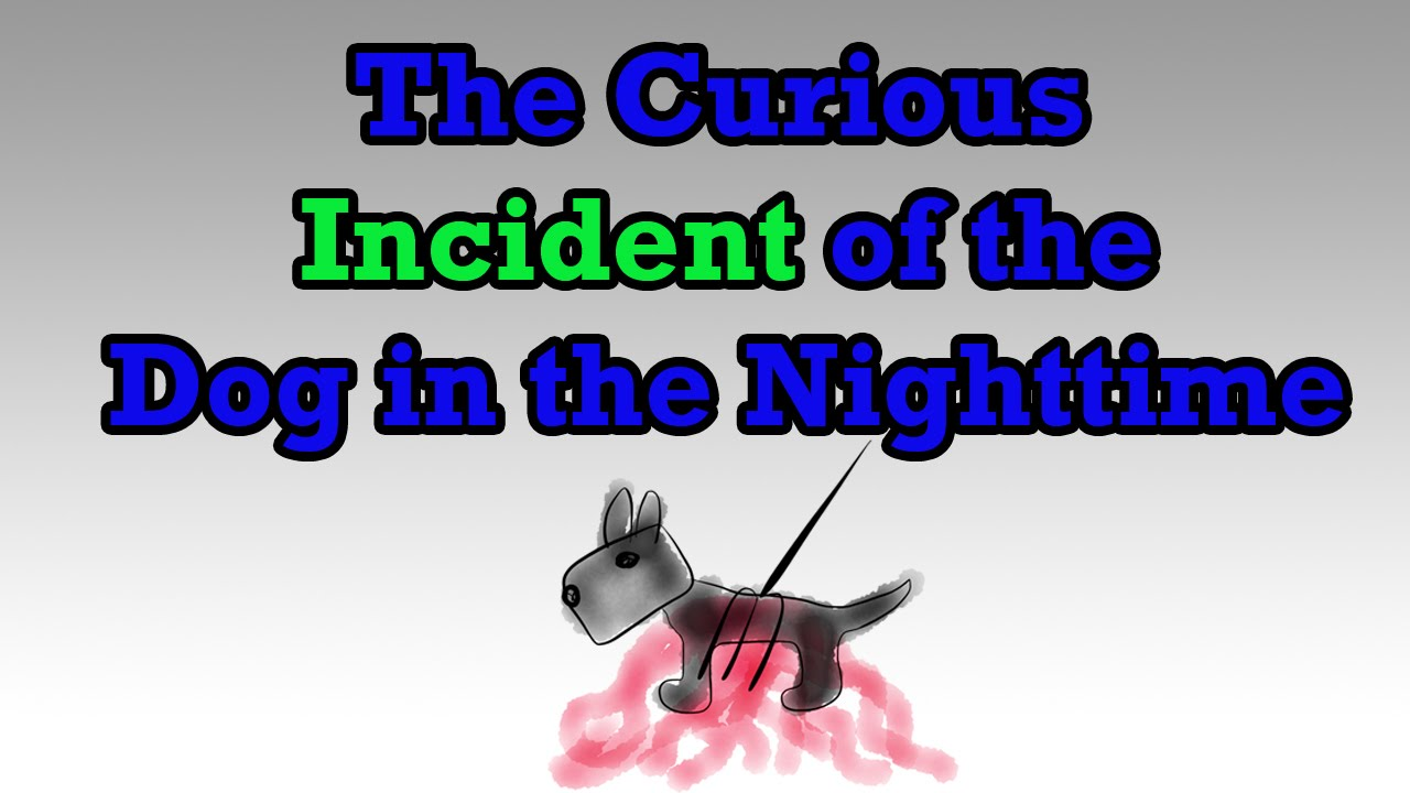 Best images about Curious Incident Of The Dog    on Pinterest     Marked by Teachers
