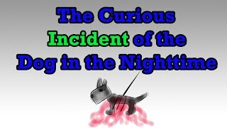 The Curious Incident of the Dog in the Nighttime by Mark Haddon (Summary) - Minute Book Report