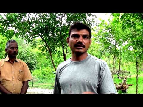 Greenfield Naturals Visits Wild Farm India