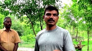 Greenfield Naturals Visits Wild Farm India
