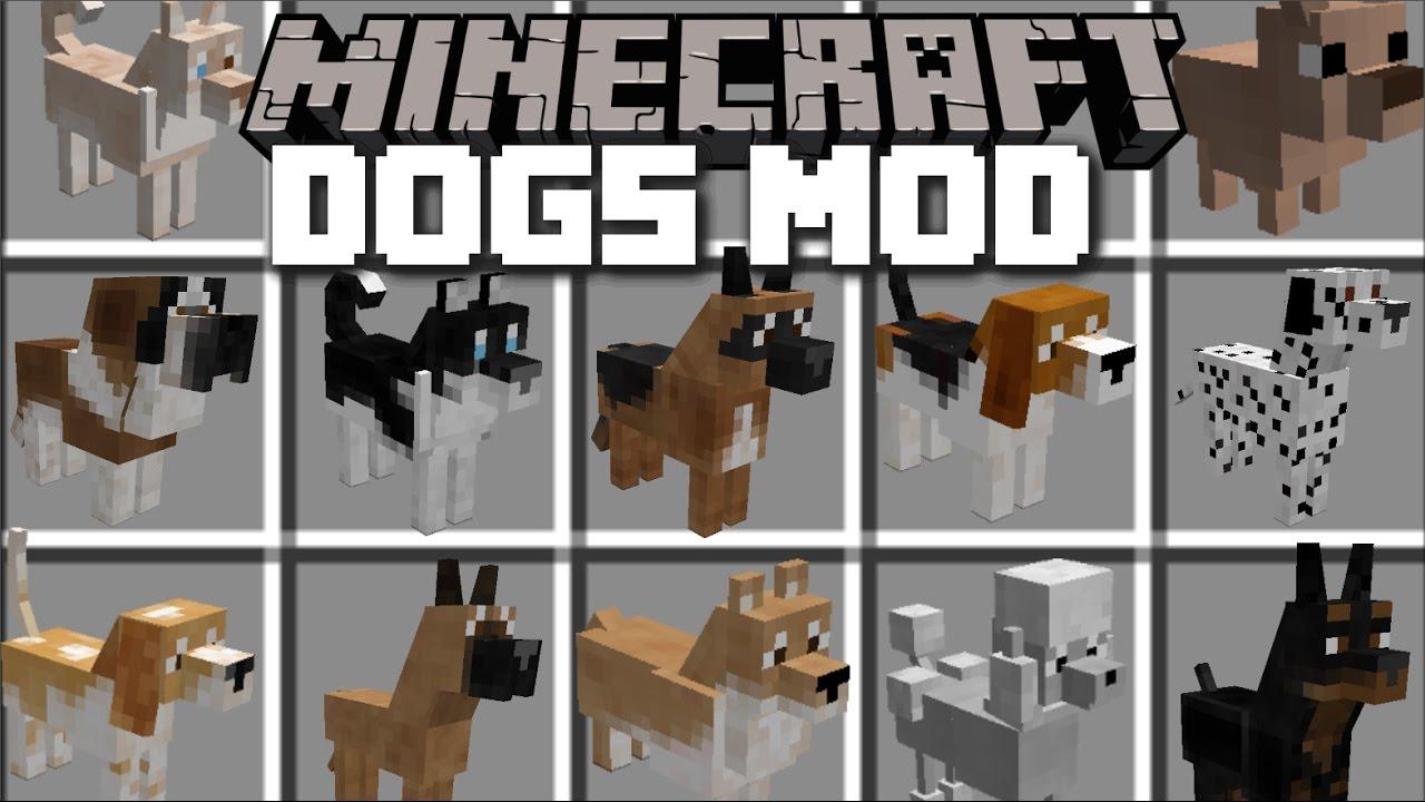 Minecraft Pet Dog Mod Enjoy The Company Of Loads Of Dog Pets Minecraft Youtube