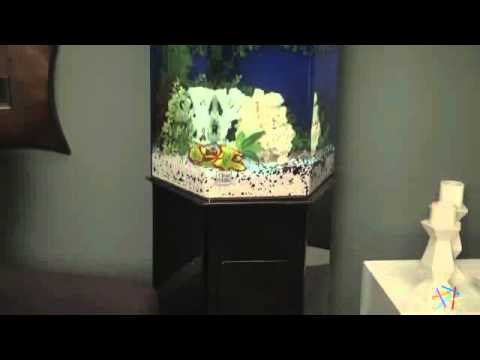Clear For Life Hexagon Aquarium Product Review Video