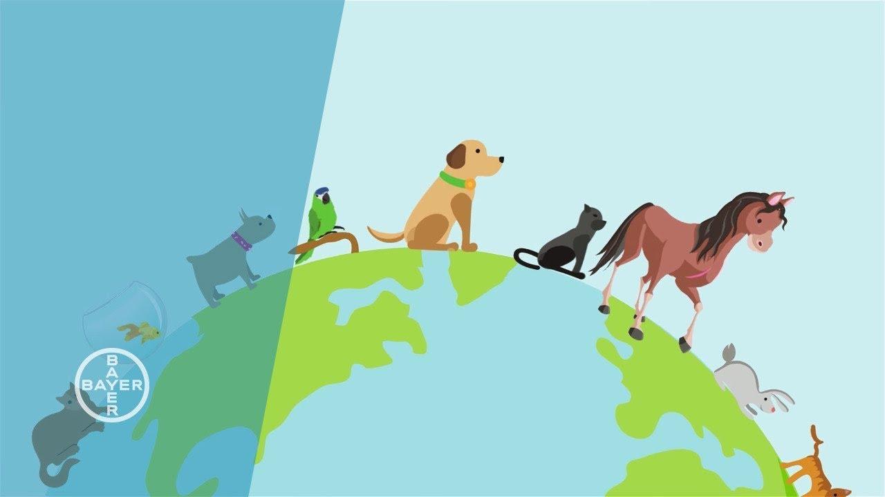Animal Health Business Unit of Bayer
