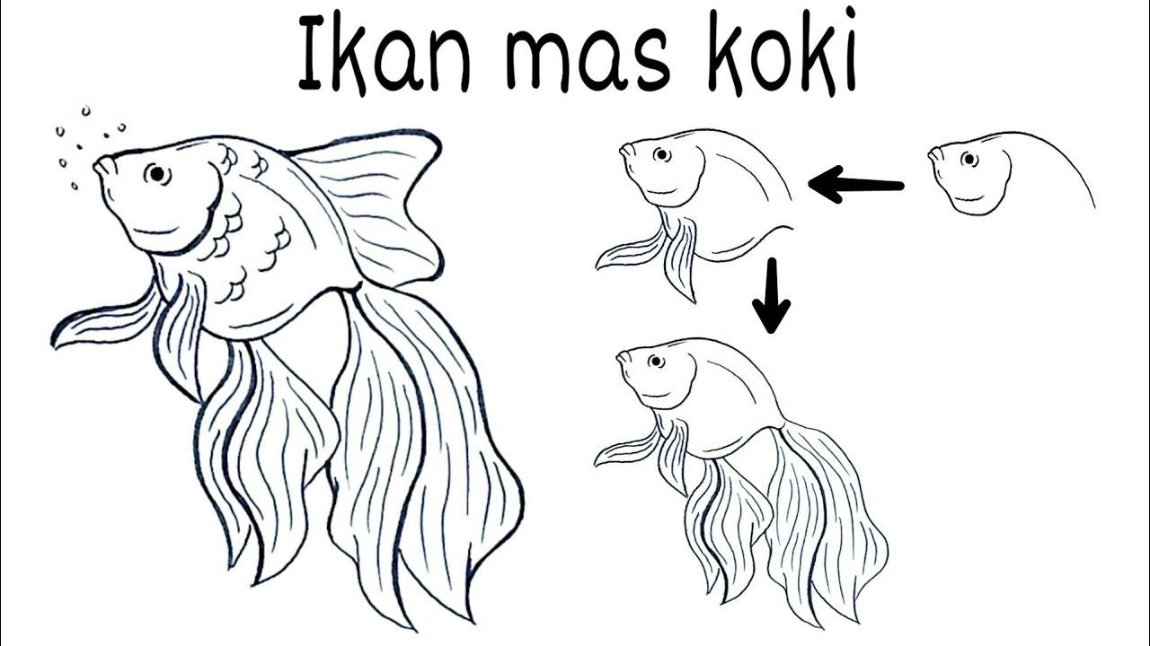 Cara Menggambar Ikan Hias Mas Koki Youtube