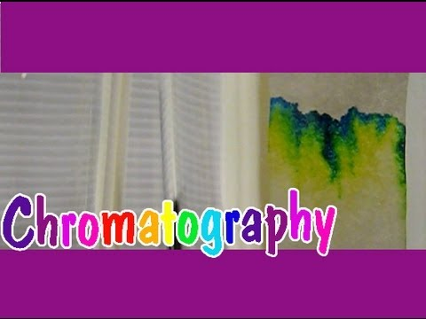 CHROMATOGRAPHY Easy Kids Science Experiments