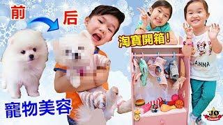 狗狗博美到美容院修毛!狗狗衣櫃 好可愛喔~ 寵物玩具淘寶開箱 Puppy Pomeranian Dog Grooming(Toys Opening)!