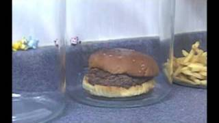 The Decomposition Of McDonald