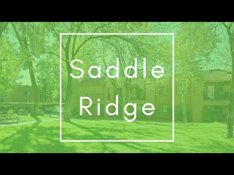 Saddle Ridge Apartment Homes - Oro Valley, AZ