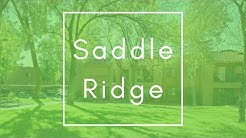 Saddle Ridge Apartment Homes - Oro Valley, AZ