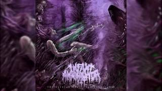 Infant Annihilator - Behold the Kingdom of the Wretched Undying (feat. Tyler Shelton, Bryan Long...