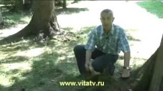 Нарезка Иван Гамаз и Доктор Попов!