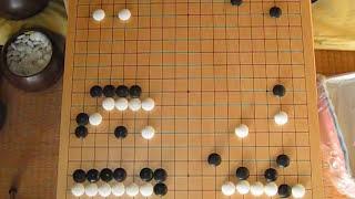 幻庵因碩vs葛野丈和 (前編) 文化12年 MR囲碁165-1 c