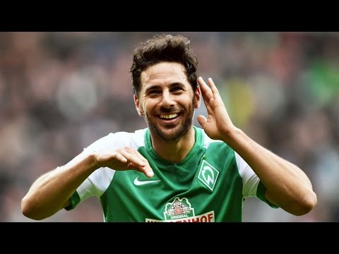 Claudio Pizarro all 17 goals of the season 2015-2016 ● HD