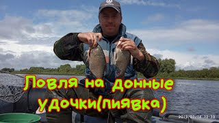 Рыбалка на донные удочки на пиявку.#Река_Припять.