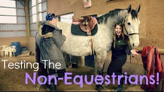 Testing the Non-Equestrians! + Free Lunging