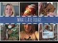 Een dagje mee eten met Sandra 7 | What I Ate Today | Proud2Bme