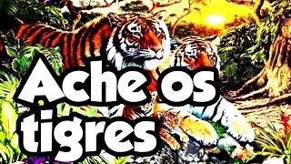 🔴 ENIGMA DOS TIGRES ESCONDIDOS E LENDO COMENTÁRIOS | Desafio Quiz 8