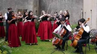 Live performance by the Vivaldi Strings ensemble from Wheaton, Illi...