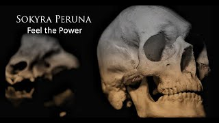 Sokyra Peruna - Feel the Power (official video)