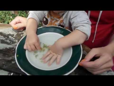 Нарывает палец возле ногтя у ребенка