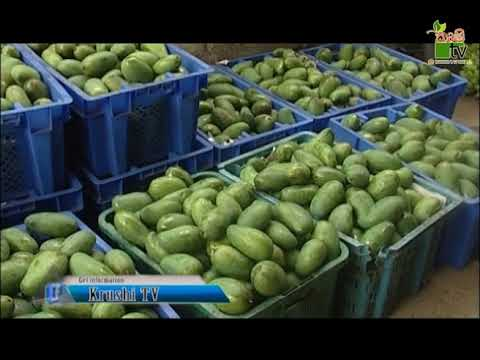 Department Of Agriculture Sri lanka Krushi tv channel-.ගුණාත