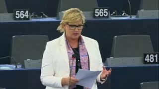 Karin Karlsbro 17 Sep 2019 plenary speech on Amazon forest fires