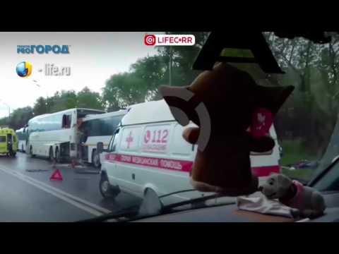 Автобус Рязань-Домодедово