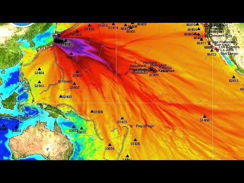 Fukushima Deadly Radiation Effects Japan 4 Years Later