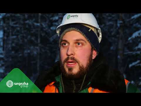 Представляем лесные профессии мастер леса