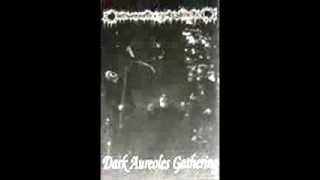 Watch Darkwoods My Betrothed Dark Aureoles Gathering video