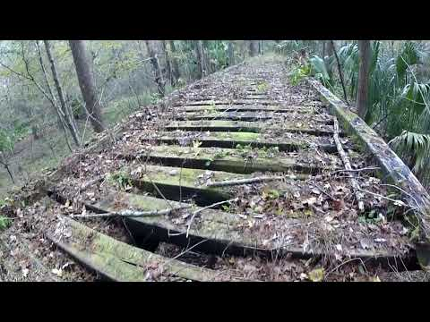 Old Railroad Line in Goethe State Forest (Part One)