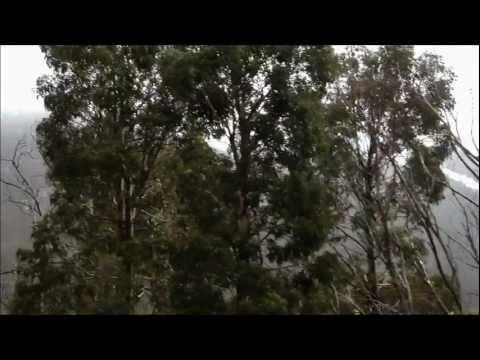 Trip to the Snowy Mountains, Australia