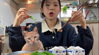 (ENG) Living with Cats 3