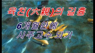 사주강의 6개월안에 고수되기 21편 육친의 길흉(수정판)