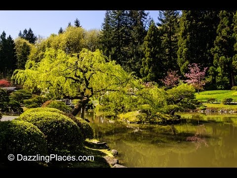 A Sunny Spring Visit to the Japanese Garden in Seattle's Washington Park Arboretum
