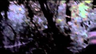 Forget Me Not Official Trailer 2010.wmv