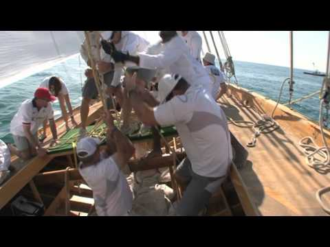 Dhow Race Experience!
