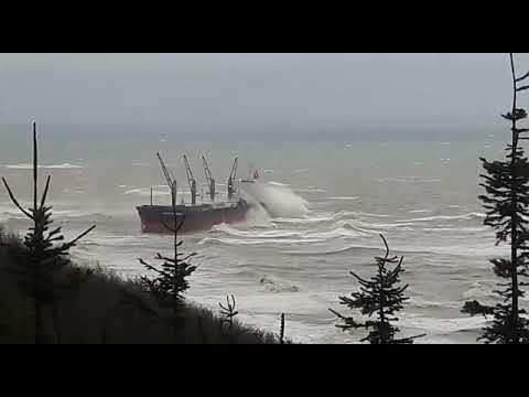 Bulk carrier MERCURY OCEAN drifted aground during the night Oct 25-26 2020