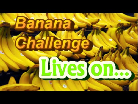 Banana Challenge FAILED!!......Or Did WE?!?   Live Stream~