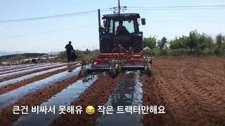 [고창이엠푸드] 2018 햇땅콩 사전예약주문 땅콩수확시…