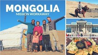 Workaway en Mongolie (eng, fr, norsk subs)