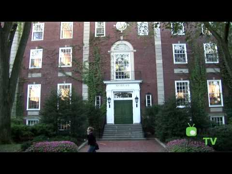 Harvard, Stanford, and Wharton: Navigating the Business School Trilogy